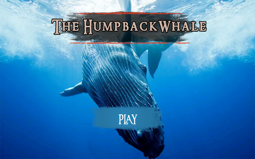 The Humpback Whales