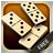 icon Dominoes 29
