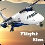icon Flight Sim
