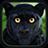 icon Wild Panther Sim 100