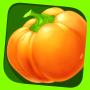 icon Hobby Farm Show