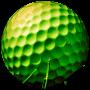 icon Mini Golf Arena