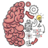 icon Brain Test 2.63