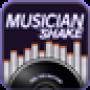 icon Musician SHAKE