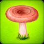icon Forest Clans - Mushroom Farm