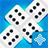 icon Domino 101.1.71