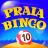 icon Praia Bingo 21.13