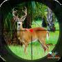 icon Deer Hunter Animal Africa