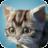 icon Cat Sim 2.2.28