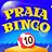 icon Praia Bingo 25.25
