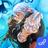 icon Eldarya 1.0.6