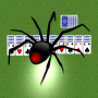 icon Spider Solitaire