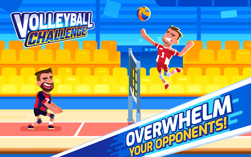 Volleyball Challenge - volleyball game