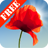 icon Poppy Field Free 3.09