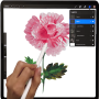 icon New Procreate Paint Free Painting Guide