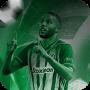 icon com.football.hbfrgf.bettingpro