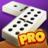 icon Dominoes 6.2