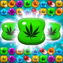 icon Weed Match