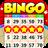 icon Bingo Holiday 1.8.0