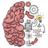 icon Brain Test 2.37