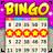icon Bingo Holiday 1.8.5