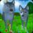 icon Wolf Simulator: Wild Animals 3D 1.043