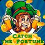 icon Catch the Fortune
