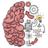 icon Brain Test 2.50
